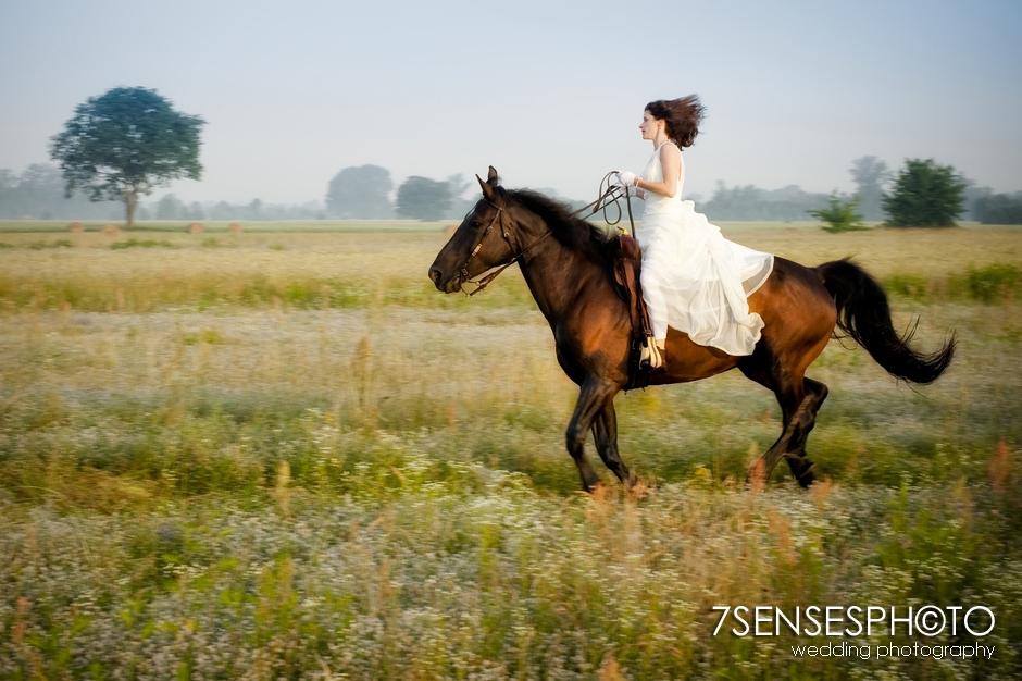 7sensesphoto sesja slubna plener konie 16