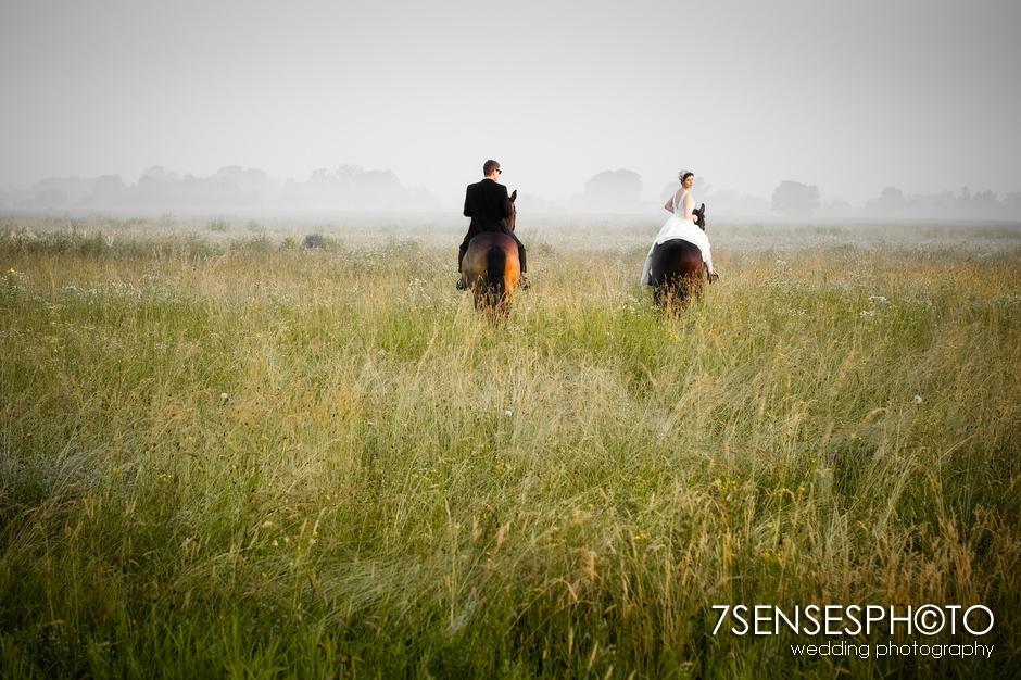7sensesphoto sesja slubna plener konie 19