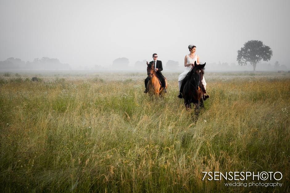 7sensesphoto sesja slubna plener konie 2