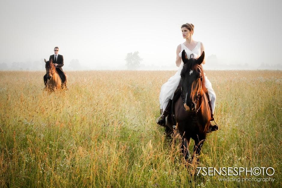 7sensesphoto sesja slubna plener konie 3
