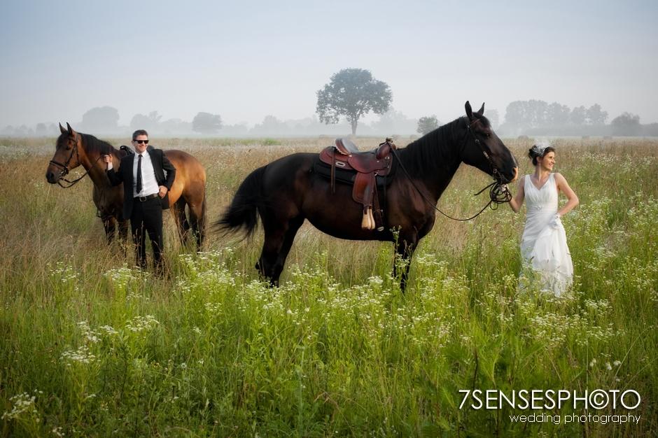 7sensesphoto sesja slubna plener konie 4