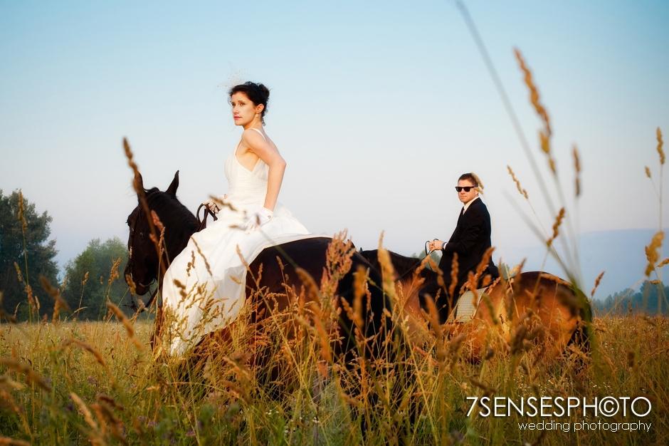 7sensesphoto sesja slubna plener konie 9